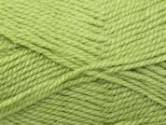 Stylecraft Life Aran Knitting Yarn Fern 2418