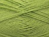 Stylecraft Special DK Knitting Yarn Meadow 1065