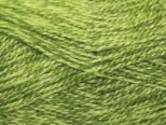 Stylecraft Extra Special DK Knitting Yarn Greengage 1124