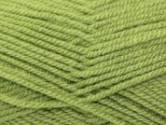 Stylecraft Special Aran Knitting Yarn Meadow 1065
